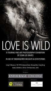neuschwansteiner-love-is-wild-sean-lee-davies-flyer
